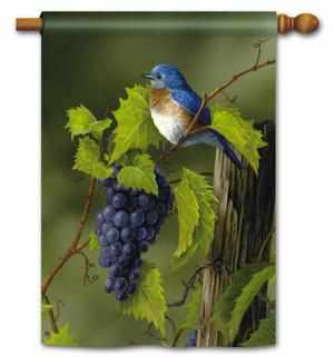 VINEYARD BLUEBIRD